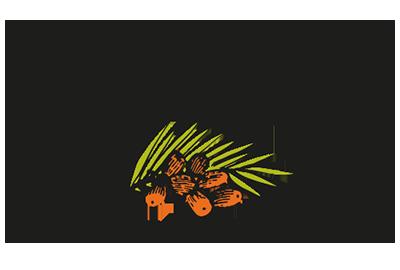 Desert Fruit Retina Logo